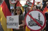 Les démocrates-chrétiens allemands envoient une musulmane au Bündestag