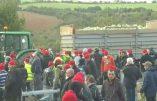 Demain ce sera bonnets rouges pour tous…
