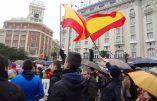 Manifestation pour la vie à Madrid