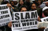 85 % des victimes du terrorisme tuées au nom d'Allah