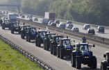 Un dramatique accident en marge de la mobilisation des agriculteurs ce matin