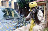 On se dirige vers un génocide antichrétien en République centrafricaine