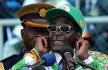 Au Zimbabwe, les blancs et les étrangers ne pourront plus détenir de commerce