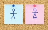 Théorie du genre: un changement de paradigme anthropologique