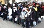 Italie – Un musulman sur trois déclare ne pas vouloir s'intégrer