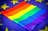 Le Conseil de l'Europe veut reconnaître juridiquement les personnes «intersexes»