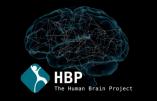 A-t-on découvert la conscience dans le cerveau ?