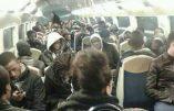 Voyager pas cher dans les transports en commun d'Ile-de-France ? Faîtes-vous passer pour un sans-papiers…