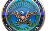 Le Pentagone veut consacrer des millions de dollars pour Israël et l'Ukraine