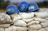 Deux soldats de l'ONU tués par les rebelles musulmans ougandais en RDC