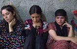 État Islamique entre obscurantisme et modernité : pilule contraceptive et avortement pour les esclaves sexuelles