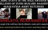 Manipulation djihadiste : une photo utilisée pour la propagande de l'Etat Islamique provient d'un film porno