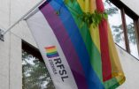 Le drapeau du RSFL, lobby LGBT suédois auquel appartenait le pédophile Stefan Johansson.