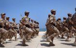 Agressions sexuelles, vols, bagarres,… : plus de 300 soldats libyens doivent quitter la Grande-Bretagne où ils suivaient une formation militaire