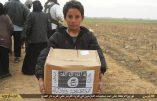 L'Etat Islamique soigne sa propagande, entre zakât et mahdisme