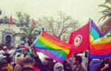 Tunisie – Forum social mondial, lobby LGBT et nouvel ordre sexuel mondial mais aussi bagarre inter-ethnique