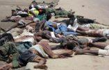 Découverte de plusieurs centaines de cadavres à Damasak