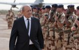 "This handout picture provided on September 23, 2013 by the French Army Communications Audiovisual office ECPAD and taken on September 22, 2013 in Gao shows French Defence Minister Jean-Yves Le Drian reviewing French troops of the French-led Operation Serval in Mali. Le Drian, visiting Mali to commemorate the 53rd anniversary of the Malian State, received a briefing in Gao on the French army operational situation and met Malian armed forces and officials of the UN stabilisation force to Mali (MINUSMA), and delivered a speech to the French troops before leaving to Bamako. AFP PHOTO / ECPAD / JEAN-FRANCOIS D'ARCANGUES HANDOUT - TO BE USED WITHIN 30 DAYS FROM September 23, 2013 - RESTRICTED TO EDITORIAL USE - MANDATORY CREDIT ""AFP PHOTO / ECPAD / JEAN-FRANCOIS D'ARCANGUES"" - NO MARKETING NO ADVERTISING CAMPAIGNS - DISTRIBUTED AS A SERVICE TO CLIENTS"