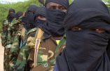 Quatorze morts dans l'attaque d'un village par des Shebab au Nord du Kenya