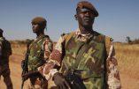 20 présumés terroristes arrêtés au Mali dont deux Français