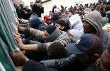 Le pouvoir socialiste, complice de l'ONU, devrait  déployer des moyens extraordinaires en faveur des clandestins