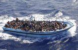 Record des demandes d'asile par des Africains en Italie