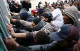 Immigration – Le suicide des nations européennes