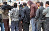 Peur des agressions sexuelles par des migrants : Rheinsberg annule son défilé du carnaval