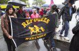 Des prédateurs sexuels parmi les bénévoles dans les centres d'accueil pour migrants