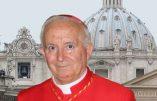 «Cette invasion d'immigrés est un cheval de Troie contre l'Europe» (cardinal Antonio Cañizares, archevêque de Valence)