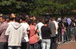 Nickelsdorf ravagée par la déferlante migratoire