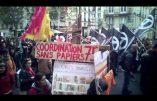 Les nervis antifas faisaient la loi à la manif pro-migrants de dimanche à Paris