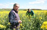 Claude Bourguignon : «Garder le lien avec la terre»
