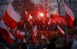 Défilé de près de cent mille nationalistes polonais pour le Jour de l'Indépendance