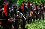 Un guérillero marxiste colombien est accusé d'avoir perpétré plus de 500 avortements