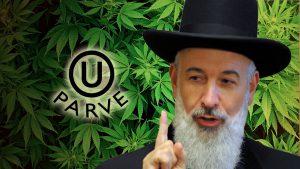 cannabis_casher