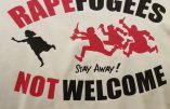A Bielefeld, 500 immigrés ont envahi une boîte de nuit pour y agresser sexuellement les femmes