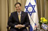 La campagne de Marco Rubio financée par Larry Ellison, «le Juif le plus riche du monde»