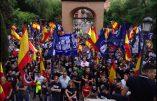 Des milliers de patriotes manifestent à Madrid