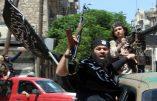 Les islamistes d'Al Nosra chassés du Liban