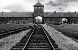 Le silence du pape à Auschwitz applaudi par la communauté juive italienne