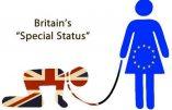 Le film par lequel les Britanniques on dit non à l'Union européenne le 23 juin 2016