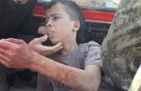 Photo de l'enfant palestinien capturé, torturé et décapité par les amis «modérés» de Hollande, Fabius, Sarkozy, Obama, etc…