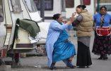 250 caravanes s'installent en toute illégalité à Flins-sur-seine