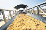 Nouvelle campagne alarmiste : cette fois, le phosphate et la potasse