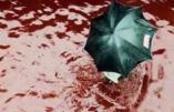 Des rivières de sang d'animaux égorgés par les musulmans coulent dans les rues de Dacca