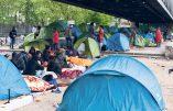 Vie de château pour les clandestins de Calais