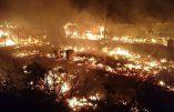 La jungle de Calais brûle car incendier sa maison, c'est une «tradition» chez les migrants