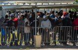 Migrants : alerte sur le sud-ouest