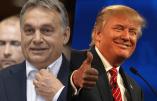 Nouvelles alliances : Donald Trump invite Viktor Orban à Washington